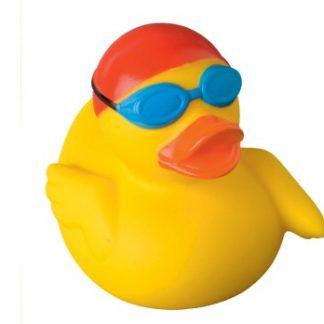 Badeend zwemmer